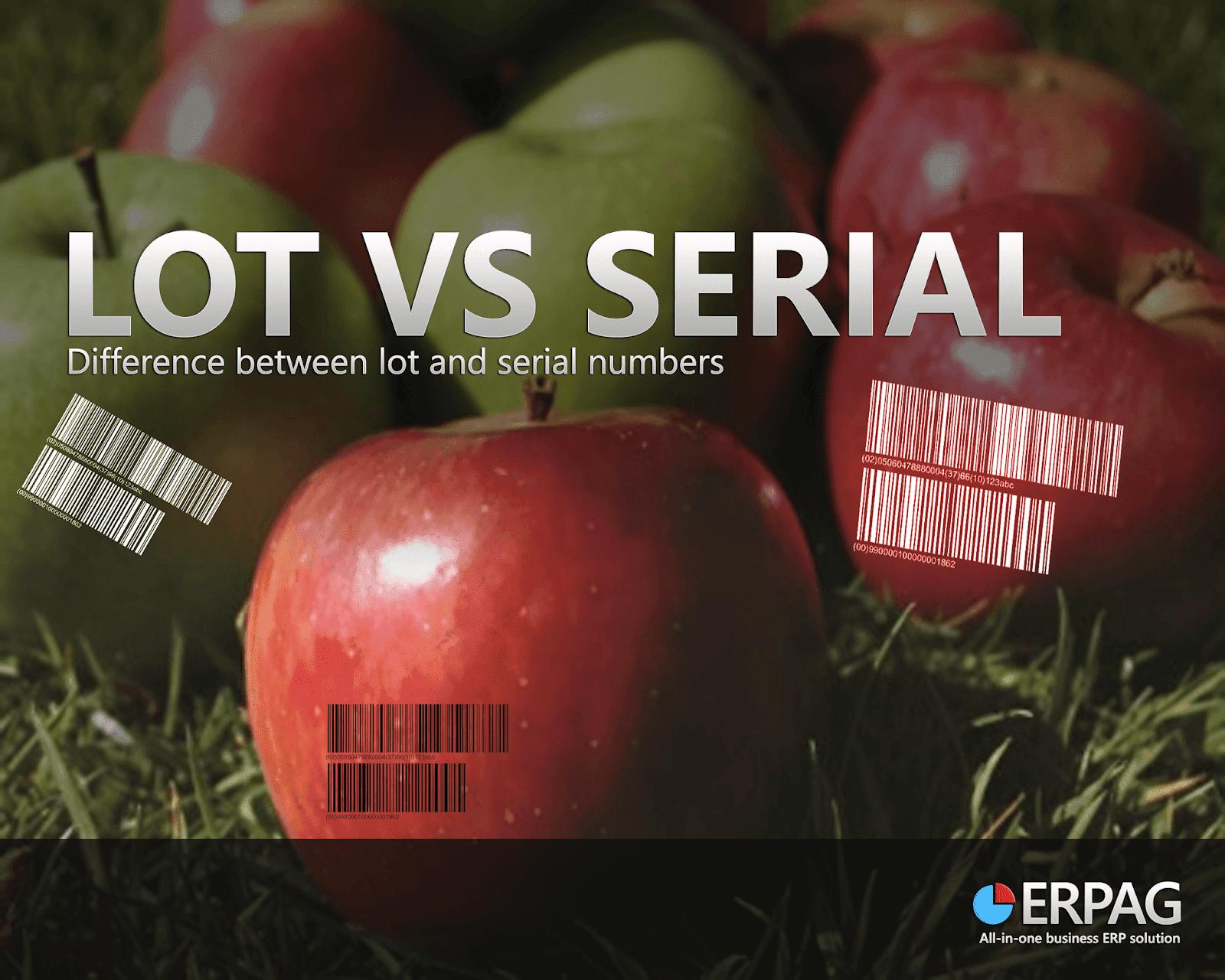 Lot Vs Serial number-MRP system